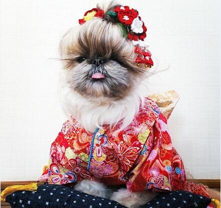 30 Flower crown (and kimono!) style