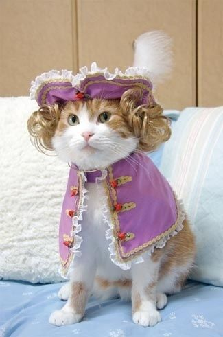 Dressing your cat in historical garb is a good idea.