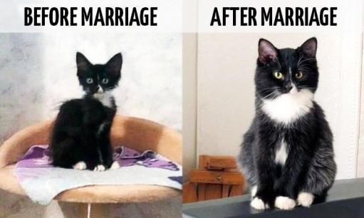 11photos-that-show-brilliantly-how-life-changes-after-marriage